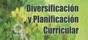 Diversificacin y Planificacin Curricular