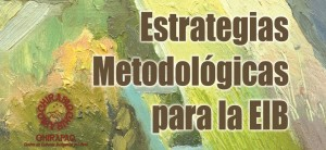Estrategias Metodolgicas para la EIB