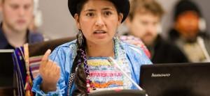 ¿Cuántos son los jóvenes indígenas?
