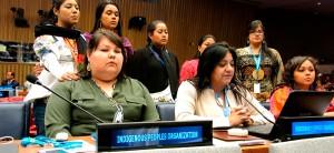Mujeres indígenas hacen llamado en la ONU para detener la violencia