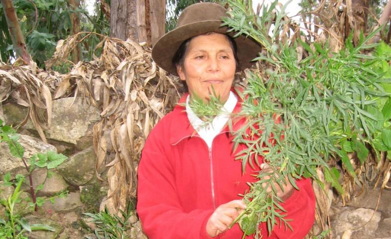 Ayacuchana nominada al premio Orden al Mérito de la Mujer